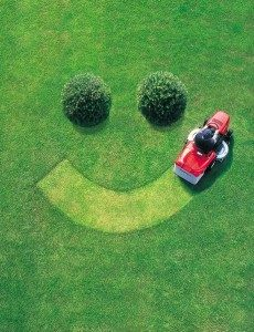 mowing-the-lawn[1]
